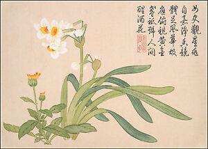 Chinese Art: Flower Paintings: Flower No. 2 by Qian Weicheng - Fine Art Print