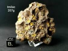 207 Gramm Imilac Pallasit Meteorit Individuell