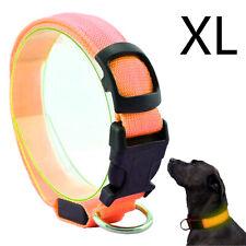 Hunde LED Halsband Orange Größe XL 52-60 cm Leuchtstreifen Leuchtband Warn S ...