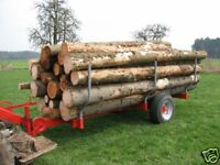 Holz- Rückewagen Bauanleitung mit Plan