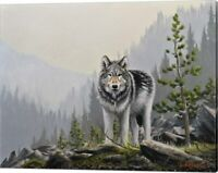 A Wild Domain by Chuck Black, Canvas Wall Art, 16W x 13H
