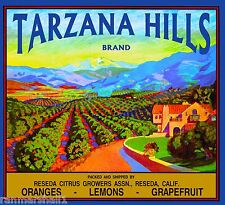 Reseda Tarzana Hills California Vintage Orange Citrus Fruit Crate Label Print