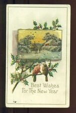 Bird ROBINS Holly BEADED Horse Carriage 1913 NEW YEAR Glitter Vintage Postcard