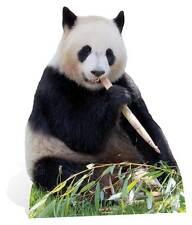 Oso Panda Gigante Lifesize cartón recorte/Pie/Stand Up/pie de bambú