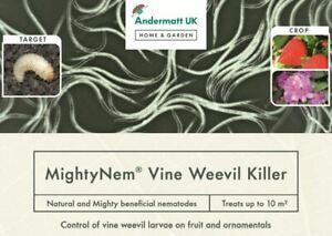 MightyNem Vine Weevil Killer - Nematodes Treats 10 sqm - Andermatt Home & Garden