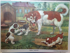 original Poster Russian educational visual aid 'Dogs' Soviet Realism 1986