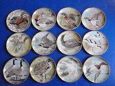 Basil Ede WATER BIRDS OF THE WORLD Plates Set of 12 EUC