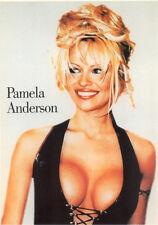 Poster PAMELA ANDERSON - Waistcoat  ca60x90cm NEU  (54365)
