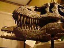Tyrannosaurus rex T-rex Dinosaur Skull Museum Model Replica Tooth Fossil Resin
