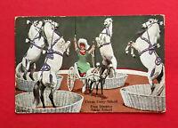 AK Zirkus um 1910 Circus Corty Althoff Frau Direktor Adele Althoff  ( 54142