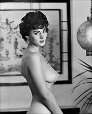 1960s Nude Pinup Virginia Gordon Nude Profile Large Breasts  8 x 10 Photograph