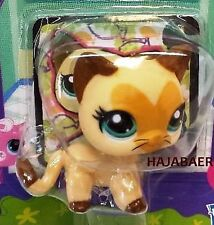 ☆ Littlest Pet Shop ☆ SIAM KATZE SIAMESE CAT  #3573 ☆ HEART FACE ☆ RAR NEU OVP