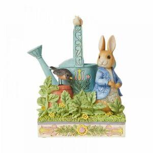Jim Shore Beatrix Potter Peter Rabbit Caught in Mr McGregors Garden 6008744
