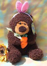 Sugar Loaf - Bunny Ears Bear Cuddly Super Soft Stuffed Animal FREE SHIPPING!
