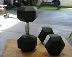 NEW PAIR 12.5kg Cast Iron Hex Dumbbell (total 25kg)