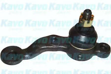 Ball Joint KAVO PARTS SBJ-9042