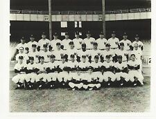 1961 NEW YORK YANKEES TEAM PICTURE - Mantle, Maris, Berra - 8 X 10 PHOTO #1