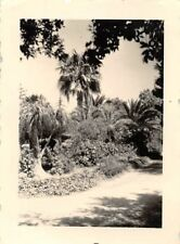 Stadtgarten von Messina Italien