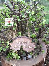 Fairy garden sign fairies live here - miniature fairy garden accessories