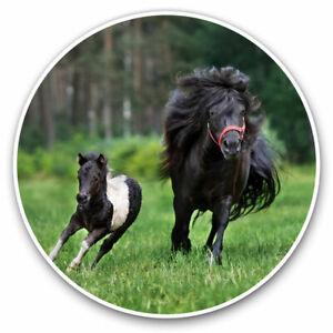 2 x Vinyl Stickers 25cm - Shetland Pony Foal Horse Kids Girls Cool Gift #24183