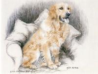 GOLDEN RETRIEVER GUNDOG DOG LIMITED EDITION PRINT - Artist's Proof # 13/85