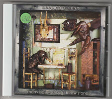 SLEEPING PICTURES - many hands should throw stones CD