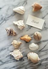 Set of 10  Seashell Place Card Holder Sea Shell Tablescape Authentic Wedding
