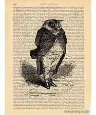 Owl Gentleman Art Print on Antique Book Page Vintage Illustration Bird Victorian