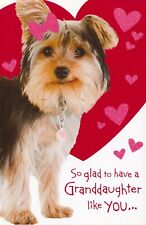 American Greetings Valentine's Day Card: Granddaughter...So Glad To Have You...