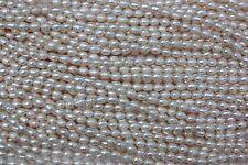 OV018 Zuchtperlen Strang Süßwasser Perlen Schmuck Kette Halskette 5-6mm Oval
