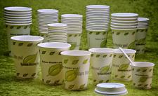 50 Kartonbecher für Heißgetränke 180 ml Bio ( Party Tassen Tee Kaffee ) Neu