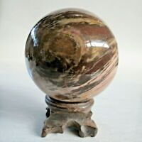 Petrified Wood Fossil Sphere 1.2 LB 522g Natural USA 72mm Polished Specimen