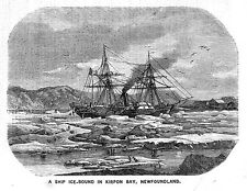 Il Canada un GHIACCIO vincolati nave in kirpon Bay, Terranova-antica stampa 1860