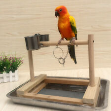 Food Bowl with Perch Stand Stair Ladder Toy Perches for Parrot, Macaw, Gray