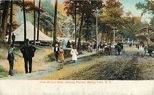 A View of Lake Road Showing the Pavilion & Ferris Wheel, Seneca Falls Ny 1908