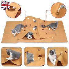 Pet Activity Play Mat Training Mat Cat Toy Bite Mat Interactive Scratching Toy