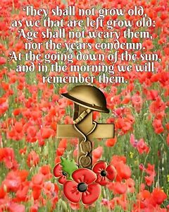 THEY SHALL NOT GROW OLD POEM REMEMBRANCE DAY POPPY POPPIES METAL TIN PLAQUE R181