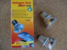 2x Lucky Reptile Halogen Sun Mini 20W, Wärmestrahler, Spot Wärmelampe