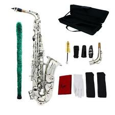 Eb Saxophone Brass Plastic Mouthpiece Exquisite with Straps Cleaning Kit Silver