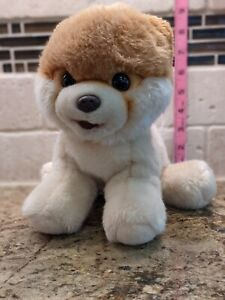 Gund BOO WORLD'S CUTEST DOG Pomeranian Puppy STUFFED ANIMAL PLUSH Soft Toy CUTE