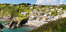 Holiday cottage in Cadgwith Cove, Cornwall - up to two dogs welcome.