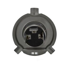 Daytime Running Light Bulb-Optilux Headlight Bulb Hella H71070201
