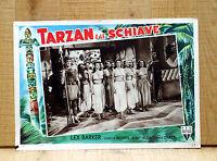 TARZAN E LE SCHIAVE fotobusta poster affiche Lex Barker the Slave Girl L99