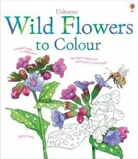 Wild Flowers to Colour, Susan Meredith | Paperback Book | Good | 9781409564980