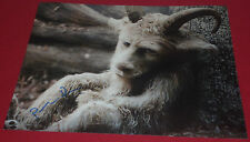 PAUL DANO SIGNED WHERE THE WILD THINGS ARE ALEXANDER STILL PHOTO AUTOGRAPH COA