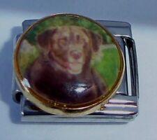 Italian Charms DG116 - Brown DOG - Labrador Retriever