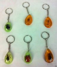 Unbranded Amber Amber Fashion Jewellery