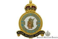 Queens Crown: Royal Air Force 350 (Belgian) Squadron Unit RAF Lapel Badge