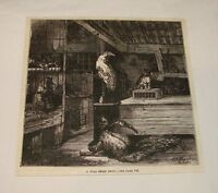 1880 magazine engraving ~ A WILD BEAST SHOP