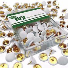 Ivy papelería-blanco recubierto Brassed chinchetas-Paquete de 200 - 9.5mm cabeza